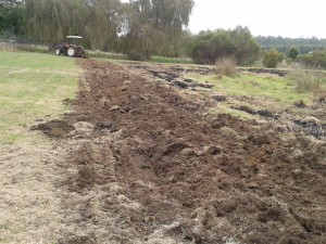 The start of ploughing