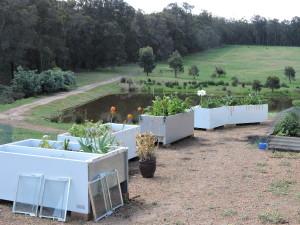 The original fridge garden