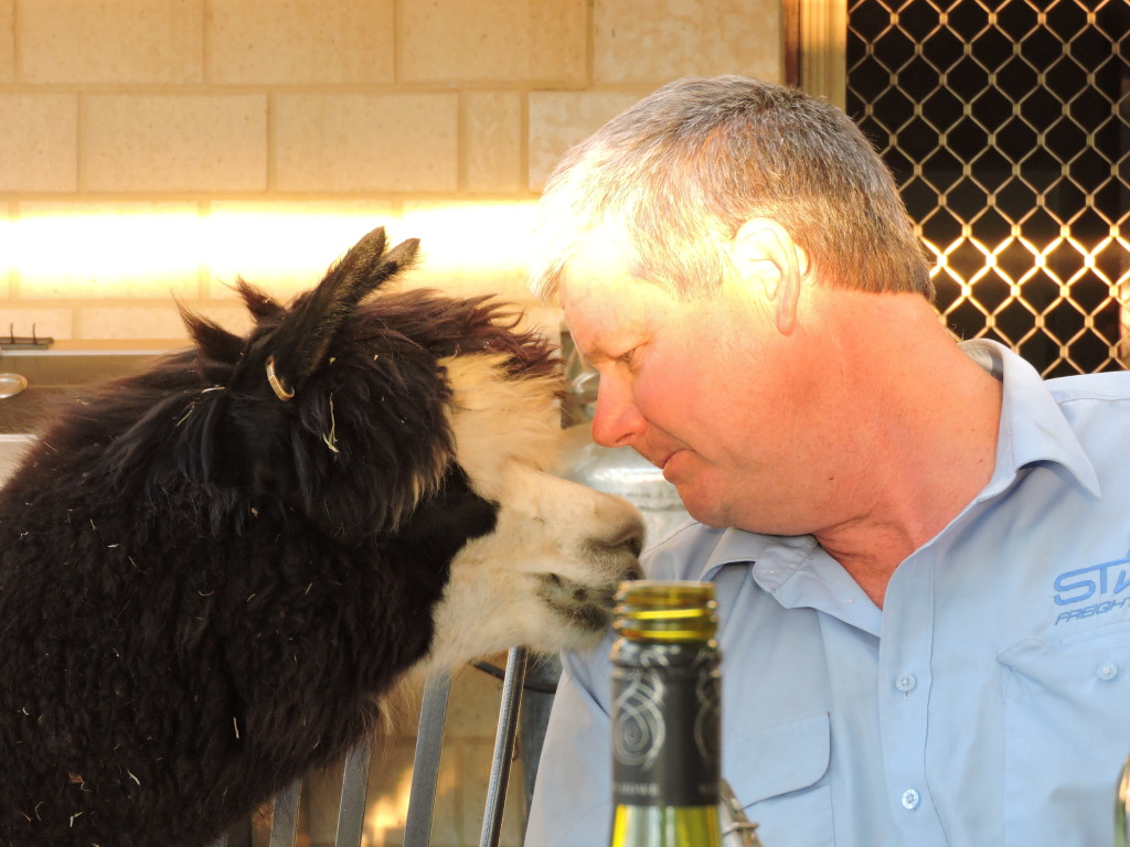 John with Ebony, the most inquisitive of animals