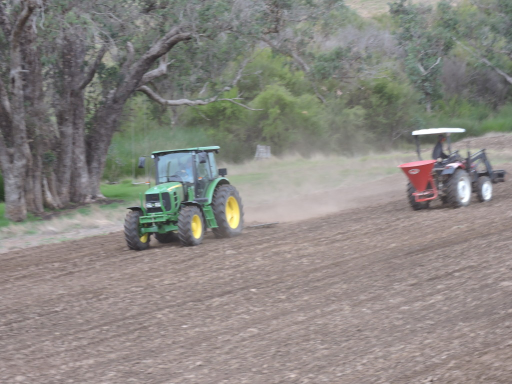 seeding & harrowing House paddock